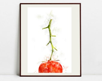 Tomato Watercolor Art Print, Tomato Illustration, Kitchen Wall art, Kitchen Wall Decor, Vegetable Print