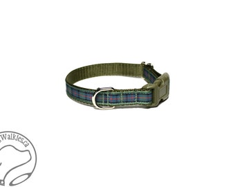 "Flower of Scotland Tartan Small Dog Collar - Thin Dog Collar - 1/2"" (12mm) Wide - Sage Blue Plaid - Choice of collar style and size"