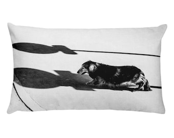 Long Haired Dachshund Rectangular Throw Pillow, 1:100 Limited Edition
