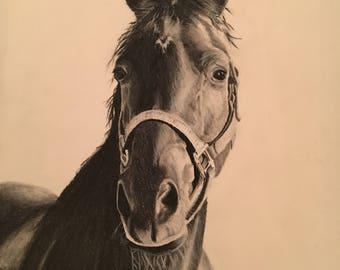 Original Charcoal Horse Drawing