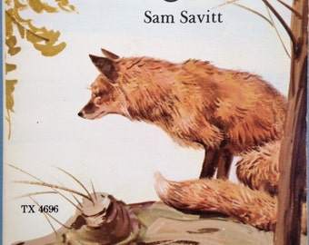 The Dingle Ridge Fox and Other Stories by Sam Savitt, paperback book, 1978
