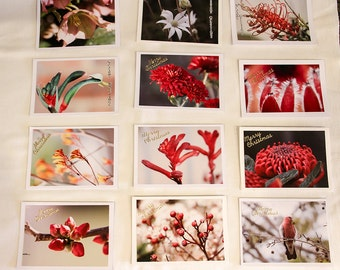 Christmas Cards, Photography