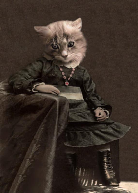 leisl vintage cat print anthropomorphic cat altered photo
