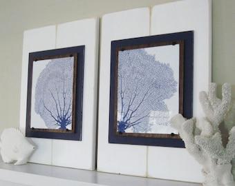 Framed Sea Fan Prints Diptych White and Navy Plank Frame Sea Fans Nautical Wall Art Coastal Decor 8X10 Prints