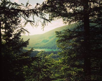 The Lake -Photo Art Print