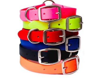 Waterproof Dog Collar with Heavy Duty D-Ring | For Small, Medium, or Large Dogs | Amish Made