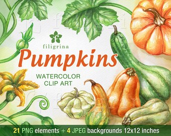 Pumpkins, gourd, squash WATERCOLOR Clip Art design. Halloween. Autumn. 21 PNG elements, 4 backgrounds 12x12 digital paper. Read about usage