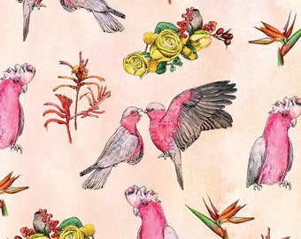 Flamin Galahs | A5 digital | Alykat Creative Aussie series | Pink pattern birds
