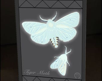 "Tiger Moths 4.25"" x 6"" Blank Greeting Card"