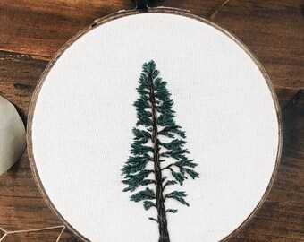 Eastern Pine