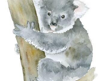 Koala Watercolor Painting - 5 x 7 - Giclee Print - Animal Painting Wall Art