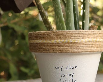 "4"" Say Aloe to my Little Friend » Aloe Vera Cute Succulent Planter Plant Pot Cute Succulent Aloe Succulent Plant Gift Set Plant Puns"