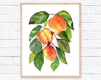 peach watercolor peach print peach art print fruit print  watercolor peach kitchen decor peach watercolour georgia peach kitchen wall art