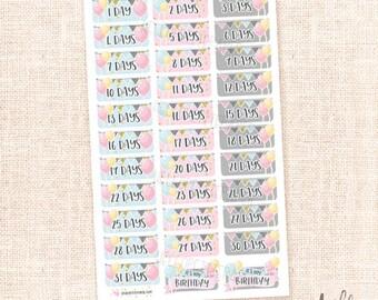 Birthday Countdown Stickers / 33 Planner stickers