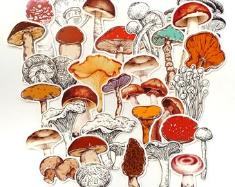 31 Mushroom Stickers, Die Cuts for your Planner Decorating,  Journaling,  or Crafting
