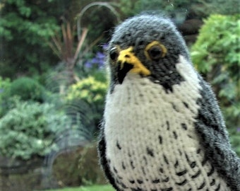 Peregrine falcon, hand knitted raptor, plush bird, amigurumi Peregrine, made in England