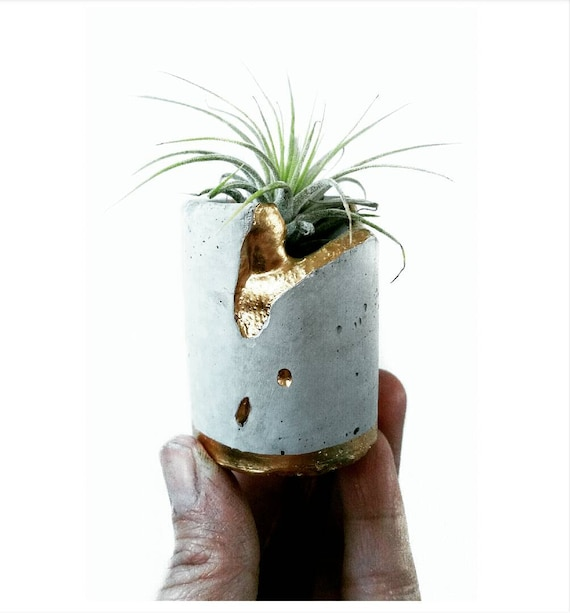 Concrete Gold Leafing Air Planter,Modern Metallic planter,Cactus Planter,Cactus Decor, Succulent Planter, Indoor Planter,Concrete Home Decor