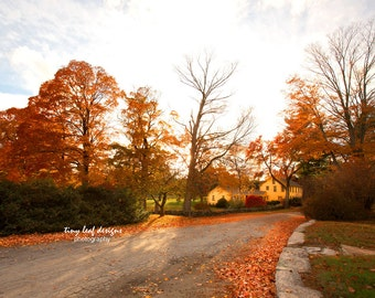 Fall in Sutton, MA Original Photography