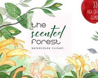 The Scented Forest, Watercolor Clipart, Watercolor Floral Pack, Watercolor Leaves, Watercolor Flowers, Watercolor Honeysuckle