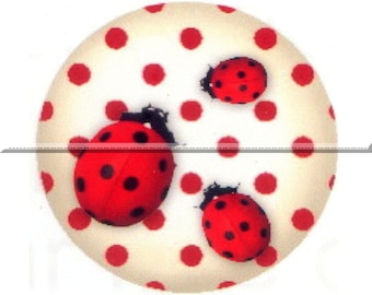 2 cabochons 18mm glass, lucky Ladybug