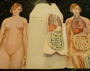 Vintage TWO The Human Body Books  The How and Why Wonder Books WITH Paper Doll Body Flip Pages