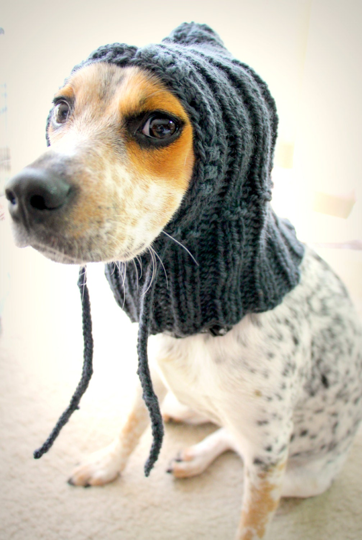 Top Paw  In  Dog Coat