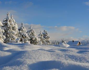 Placemat / blotting pad laminated snowy winter landscape