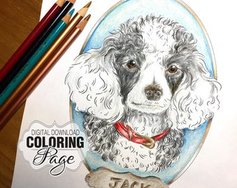 Coloring Page, Poodle Portrait Dog Art, Animal Art Digital Download, Poodle with Collar & Name Plaque, Jpg File, A4 (Poodle01Plaque)