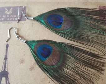 Peacock feather earrings ~ silver ~
