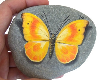 Painted Rock with Yellow Butterfly | Original Yellow Butterfly Resting on A Rock Handpainted by Roberto Rizzo | Rock Art Painting