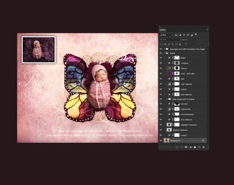 Newborn digital backdrop - PSD file with layers - Newborn felted wool butterfly 1