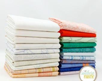Friedlander -  Scrap Bag Scraps-- Scrap Bag Quilt Fabric by Carolyn Friedlander