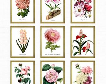 Botanical Print Set Pink Flowers and Butterflies, Pink Floral Botanical Print Set, Home Decor, Vintage Botanical Art, Reproduction Art GR004