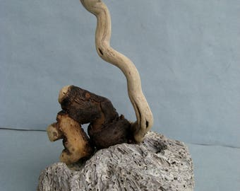 Fantasy Driftwood Sea Creature on Coral-DS37