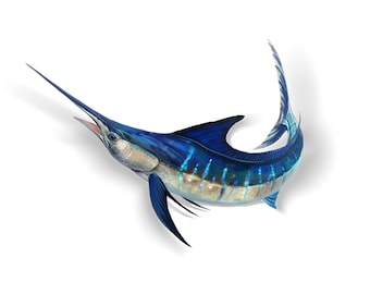 Jumping Marlin Decal, Jumping Marlin Sticker, Striped Marlin, Marlin Decal, Marlin Sticker