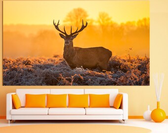 Large nature deer photography wall art print set on canvas, deer wildlife photography wall decor, deer photo decor animal wall art print set