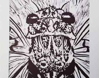 Cicada Insect Anatomy Drawing Linoleum Print: Floury Baker 1, Purple, Lino-cut