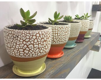 3 Modern stoneware planters