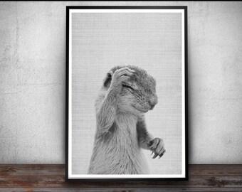 Squirrel Print, Nursery Print, Squirrel Wall Art Decor, Black and White Animal Print, Printable Art, Black and White Animal Nursery