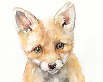 Baby Fox - Print