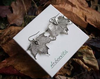 Real Maple leaf silver earrings