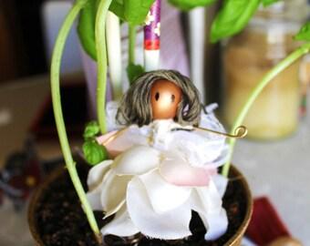 Ilsa Fairy
