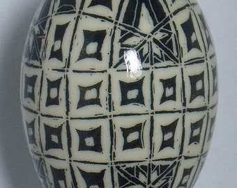 Pysanky Black & White Squares on a Duck Egg