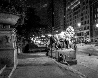 Chicago Art Institute Lion at Night