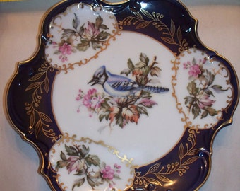 Pair of fine china plates w/ birds and flowers