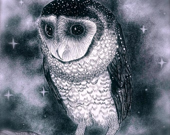 Owl Pen and Ink and Charcoal Drawing