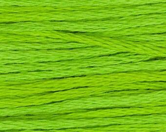 2204 Absinthe - Weeks Dye Works 6 Strand Floss
