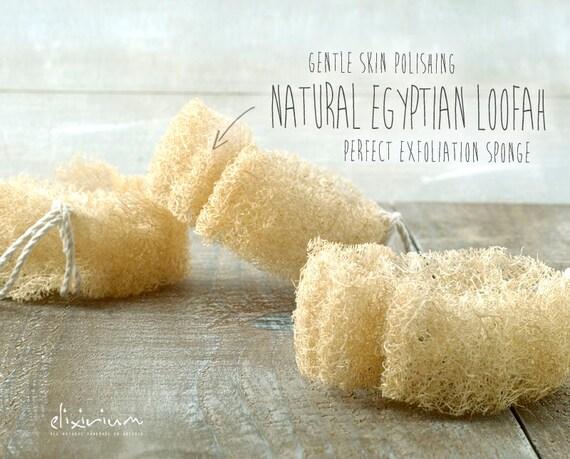 NATURAL EGYPTIAN LOOFAH • Vegan Exfoliating Natural luffa sponge for skin polishing and scrubbing.