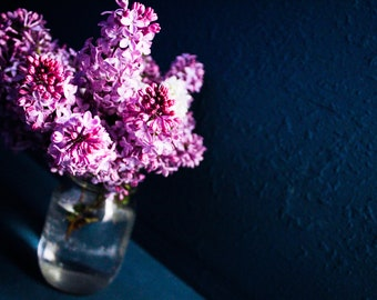 Purple Lilacs on a Blue background