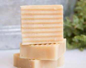 Eucalyptus - Handmade Goat's Milk Soap